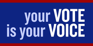 Image with the following text:  Your Vote Is Your Voice